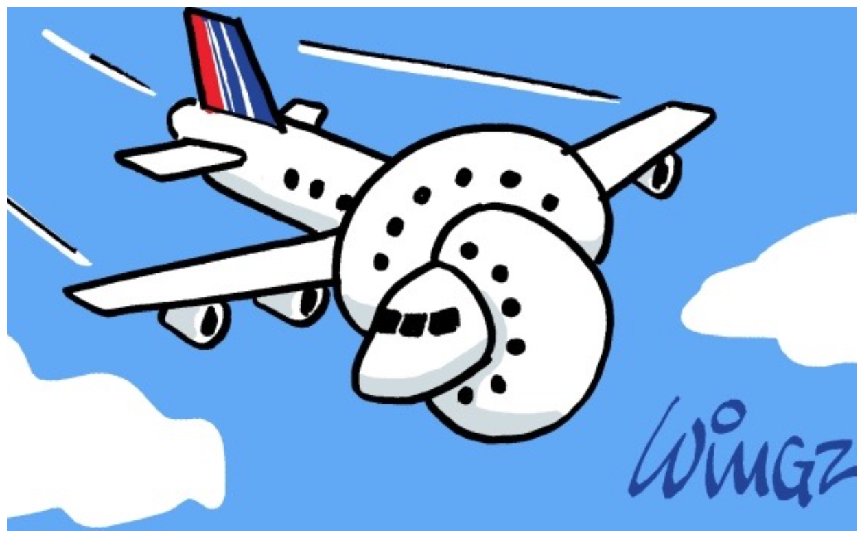 avion-wingz
