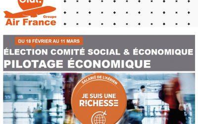 ÉLECTIONS COMITÉ SOCIAL & ÉCONOMIQUE PILOTAGE ECONOMIQUE