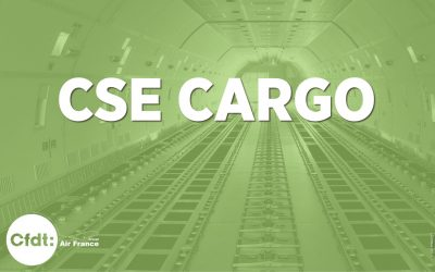 Session ordinaire du CSE Cargo du 27 mai