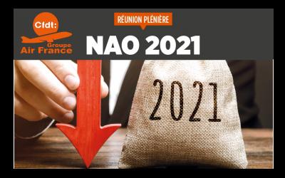 NAO 2021 – REUNION PLENIERE